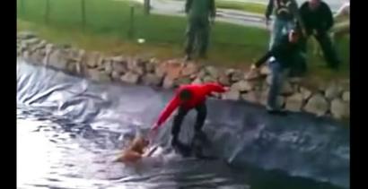 Ludzie ratują psy - piękne akcje ratunkowe!
