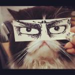 Tak Japończycy nabijają się ze swoich kotów