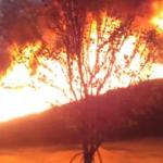 Miotacz ognia domowej roboty