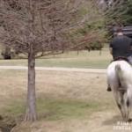 Kulturysta na koniu - O OŁ...