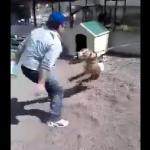 Idiota drażni psa na uwięzi - UWAGA, STRASZNE!