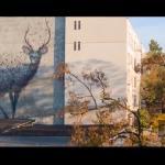 Festiwal murali z Łodzi - WOW!