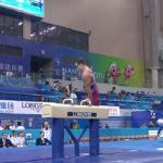 Mistrzostwa świata w gimnastyce artystycznej 2014