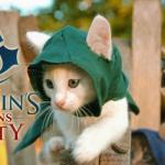 """Assassin's Kittens Unity"""