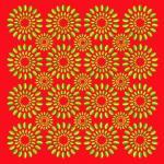 Akiyoshi Kitaoka - mistrz iluzji optycznych