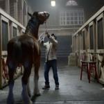 Wzruszająca reklama Budweisera