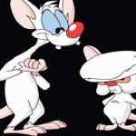 Pinky i Mózg - Pinky to geniusz?