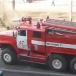 Rosyjscy strażacy nie są chyba fanami kotów...