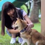 Co czuje porzucony pies? POTWORNIE SMUTNE!
