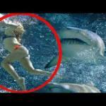 Kobieta POGRYZIONA przez rekina!