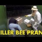Zabójcza pszczoła - mocny kawał