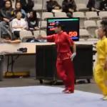 Sztuka walki Wushu - przepiękna choreografia!