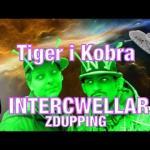 Tiger i Kobra rzucają karierę przez fatalny film Nolana