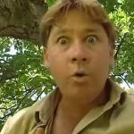 Steve Irwin - za to kochał go świat!