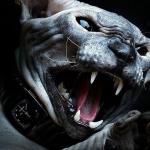 Koty ZNĘCAJĄ SIĘ nad ludźmi!