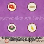Jak psychodeliki ratują życie - KONTROWERSYJNE