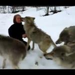 Ta kobieta jest członkinią watahy wilków!