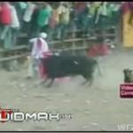 Byk prawie zabił torreadora!