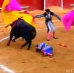 Byk zmasakrował matadora