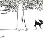 Zemsta sikającego psa