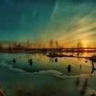 CUDOWNE zdjęcia zimy!