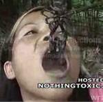 Zjadła żywego skorpiona!