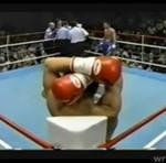 Sędzia bokserski ZNOKAUTOWANY!