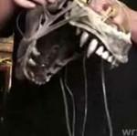 Hollywoodzka maska Obcego