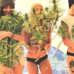 Te kobietki pragną legalizacji