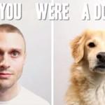 Człowiek vs pies - PORÓWNANIE