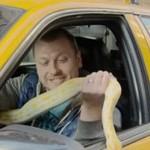 Straszy ludzi wężem - w taksówce!