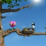 Sroki - prawdziwe trolle wśród ptaków!