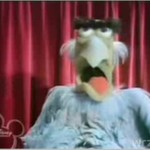 """Muppet Sejm VIII"""