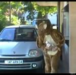 Remi Gaillard jako kangur - BOSKIE!