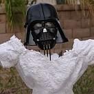 Narzeczona odeszła, suknia ślubna została - BOSKIE!