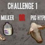 Dojenie węży czy hipnotyzowanie świń?