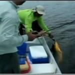 Prawdziwy wędkarz takiej rybie nie przepuści!