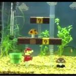 """Super Mario"" w akwarium"