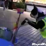Ten pies pracuje jako sprzątacz!