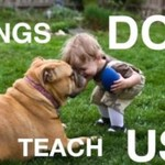 Czego możemy się nauczyć od psów? PIĘKNE!