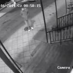 Kradzież chodnika w Radomiu