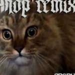 Hip-hopowy remix opętanego kota