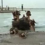 Marines vs. ruchome piaski
