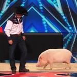 Heidi Klum pocałowała świnię!