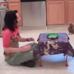 Poznajcie zadziwiająco mądrego pitbulla