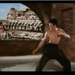 Bruce Lee vs Chuck Norris!