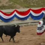 """""""Jackassi"""" bawią się w rodeo"""