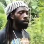 Ogromna plantacja maihuany Boba Marleya na Jamajce