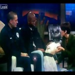 Pies rasy agresywnej - ZAATAKOWAŁ!