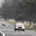 Jeleń WPAKOWAŁ SIĘ pod samochód!
